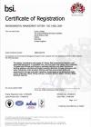 VIKING JOHNSON ISO 14001 27-08-2018